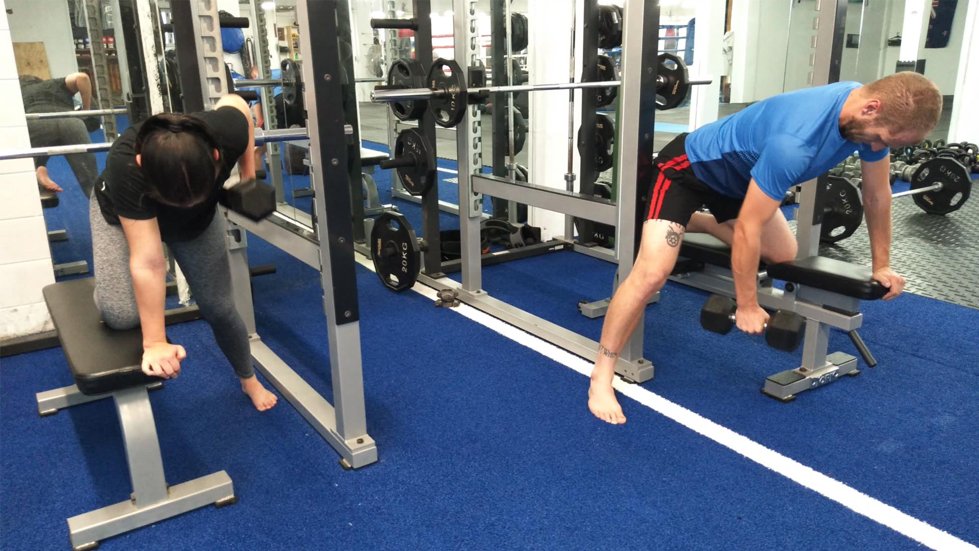 gym exercise training program